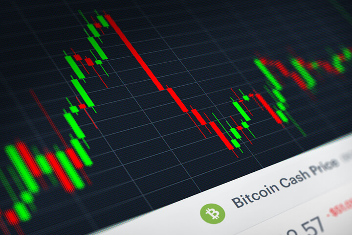 Bitcoin Cash (BCH) stock price candlestick chart monitor screenshot showing volatility and price increases and declines