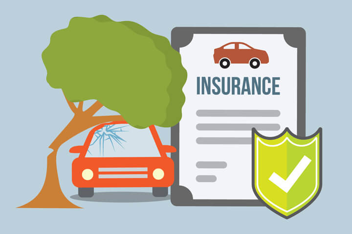 Car insurance policy and car with tree falling on roof with broken windshield flat concept